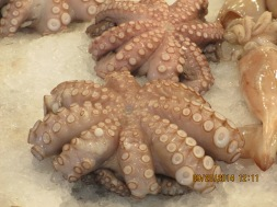 Octopus is abundant and delicious